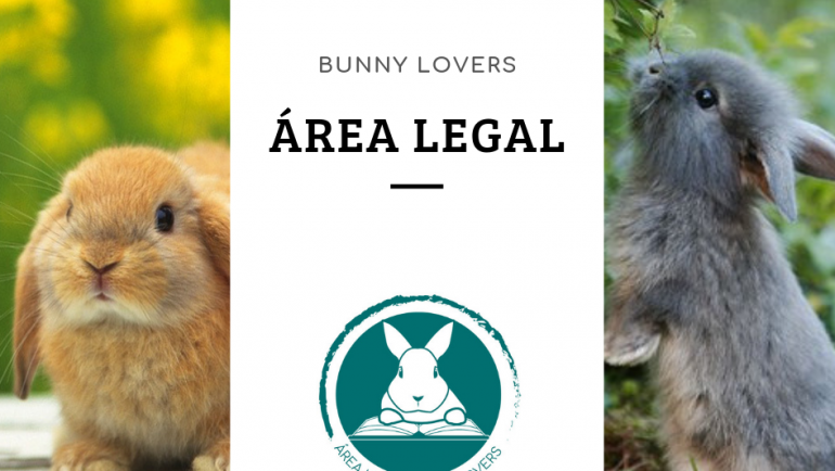 Bunny Lovers lanza su Área Legal